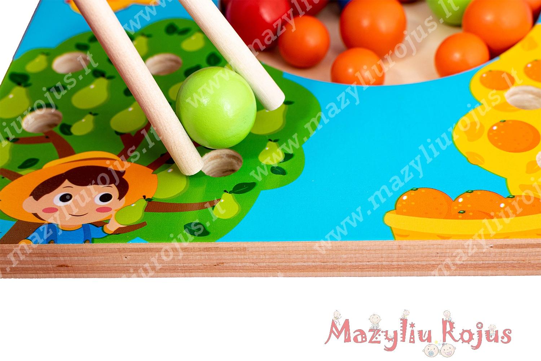 """Montessori žaidimas """"Metų laikai"""""""
